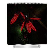 Cardinal  Plant Woodcut Shower Curtain