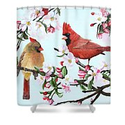 Cardinals And Apple Blossoms Shower Curtain