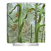 Cardwell Hill Forest Shower Curtain