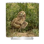 Care To Dance? Shower Curtain