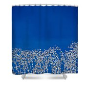 Carefree Fountain Shower Curtain