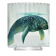 Caribbean Manatee Shower Curtain