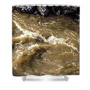 Caribou Stream Rapids Shower Curtain