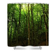 Carins Hill Co Sligo Ireland Shower Curtain