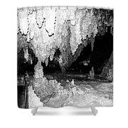 Carlsbad Cavern Walkway Shower Curtain