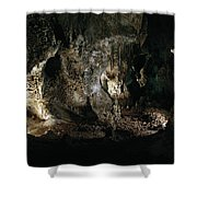 Carlsbad Tunnels Shower Curtain