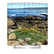 Carmel Beach At Low Tide Shower Curtain