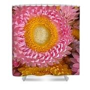 Carmel Flower Shower Curtain