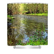 Carmel River Scenic Beauty Shower Curtain