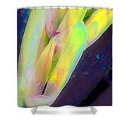 Carmellas Lily 1 Shower Curtain by Kate Word