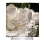 Carnation Blooms Shower Curtain