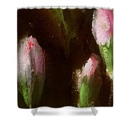 Carnation Buds  Shower Curtain