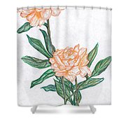 Carnation Flower Shower Curtain