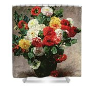 Carnations In A Vase Shower Curtain