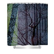 Carnegiewindowreflect Shower Curtain
