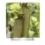 Carnivores Shower Curtain