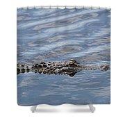 Carolina Beach Marina Alligator Shower Curtain