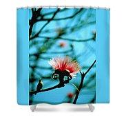 Carolina Flower And Bird Shower Curtain