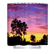 Carolina Pine Sunset Shower Curtain