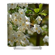 Carolina Silverbell And Bee Shower Curtain