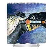 Carousel Horse 2 Shower Curtain