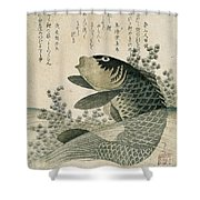Carp Among Pond Plants Shower Curtain