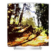 Carpet Of Autumn Leaves Shower Curtain by Patrick J Murphy
