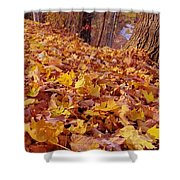Carpet Of Fall Leaves Shower Curtain