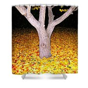 Carpet Of Leaves Shower Curtain