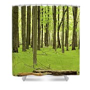Carpeted Forest Shower Curtain