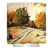 Carriage Path Shower Curtain