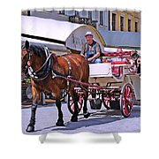 Carriage Through The City Shower Curtain