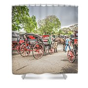 Carriages Shower Curtain