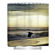 Carribean Sunrise Shower Curtain