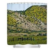 Carrizo Plain Daisy Hills Shower Curtain