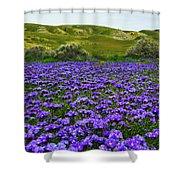 Carrizo Plain National Monument Wildflowers Shower Curtain