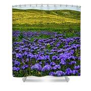 Carrizo Plain Wildflowers Shower Curtain