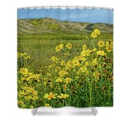 Carrizo Plain Yellow Daisies Shower Curtain