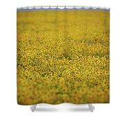 Carrizo Super Bloom Shower Curtain