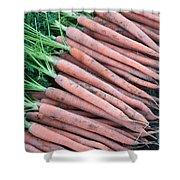 Carrots, Harvest Shower Curtain