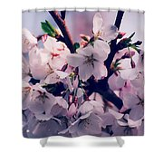 Carry Me Shower Curtain