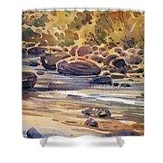 Carson River In Autumn Shower Curtain