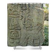 Carved Danzantes Stone Shower Curtain