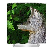 Carved Dogs Head Shower Curtain
