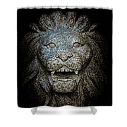 Carved Stone Lion's Head Shower Curtain