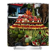 Carved Watermelon, Surin Elephant Shower Curtain