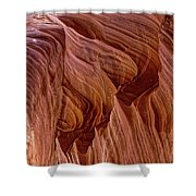 Carved Wave. Shower Curtain