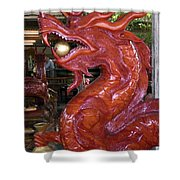 Carved Wood Dragon With Ball In Mouth Shower Curtain
