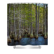 Carvers Cypress Shower Curtain