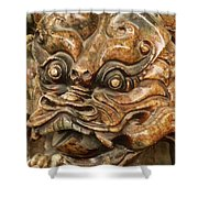 Carvings In Jade - 3 - A Dragon's Face  Shower Curtain
